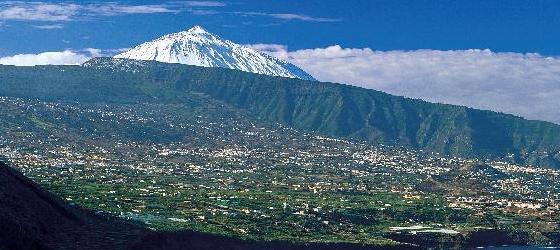 I Vini di Tenerife – D.O. Valle de la Orotava